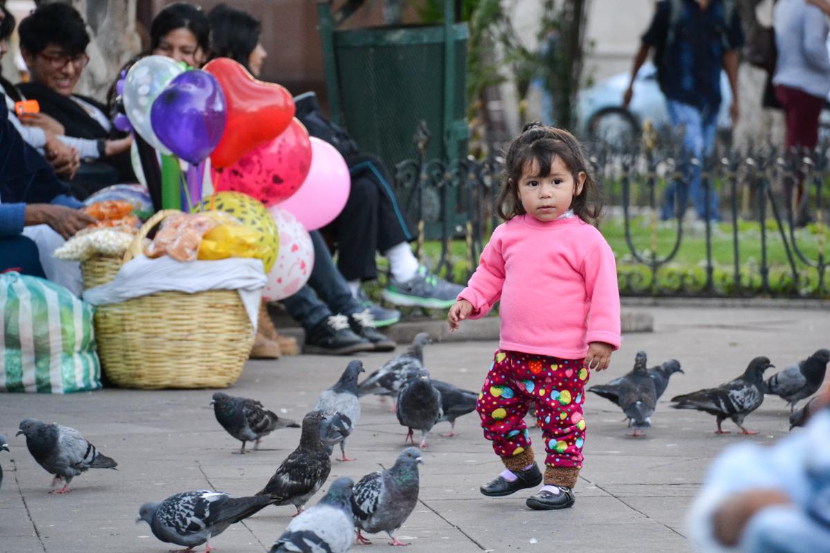 Bolivia - Girl amongst doves-- 1200px