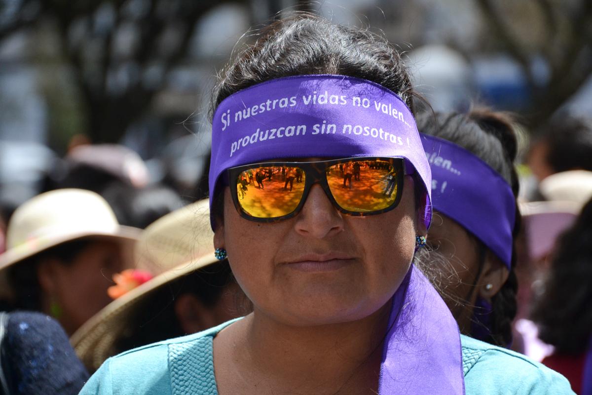 Bolivia - Woman protestor-- 1200px