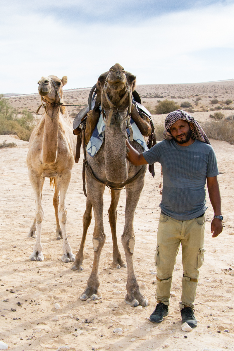 Israel - Bedouin man with camels- 1200px