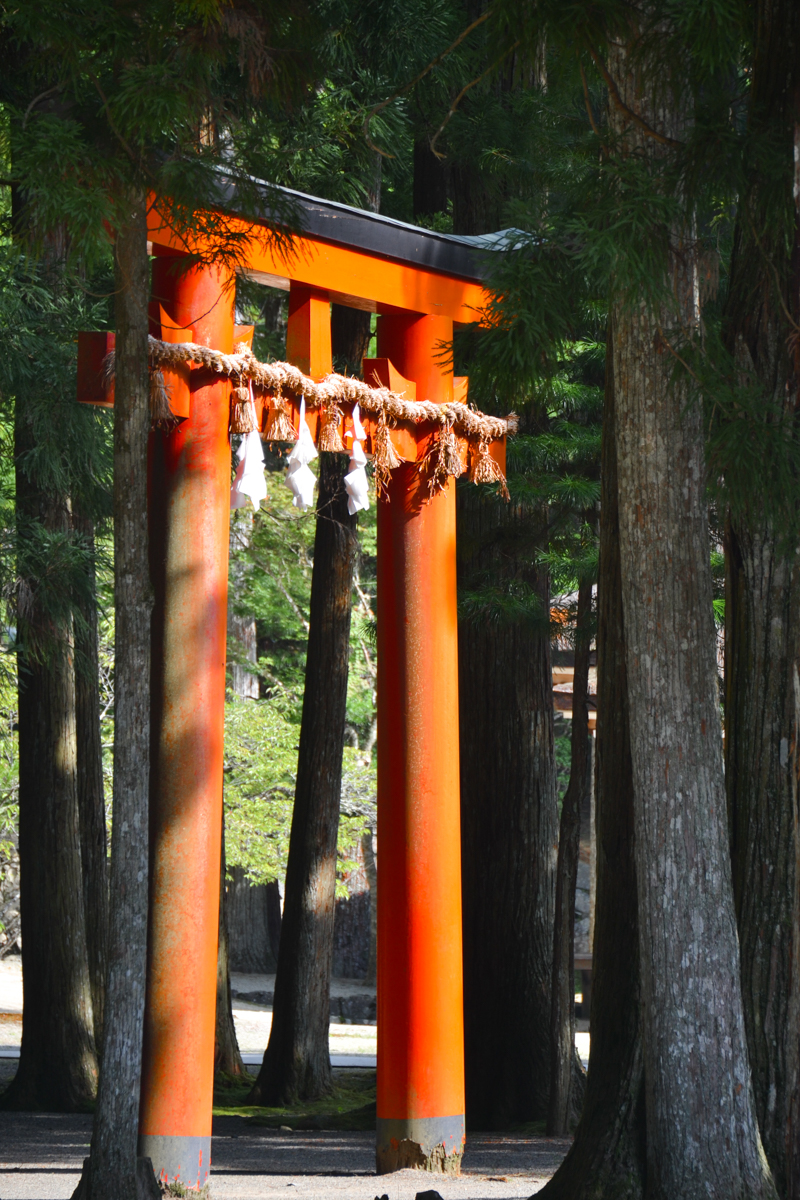 Japan - Red gate in forest